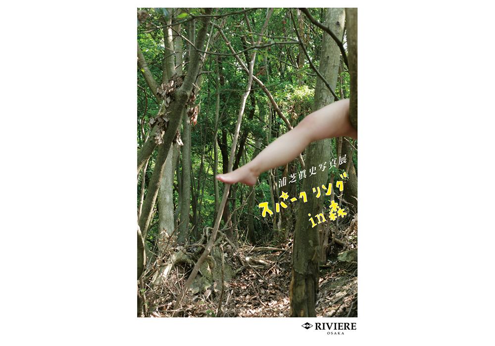 Galerie de RIVIERE展示情報 浦芝眞史写真展「スパークリング in 森」2019.11.16 SAT - 12.1 SUN